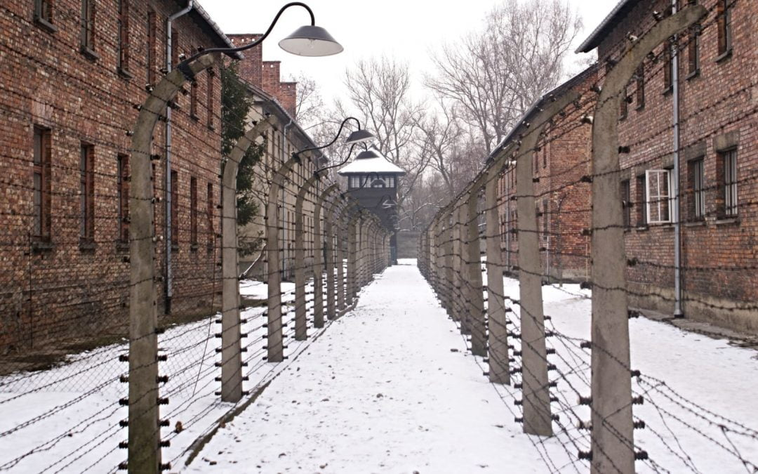 Auschwitz with snow covering the ground