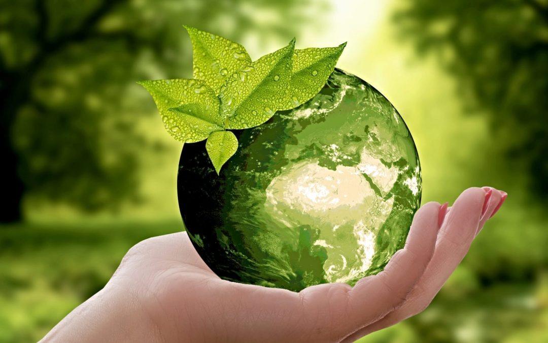 A green globe resting in a women's hand