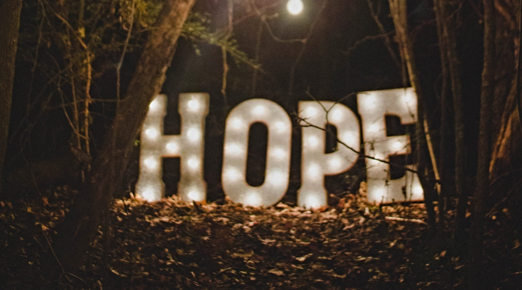 Advent Hope: When All Appears Bleak, God's Grace Abounds