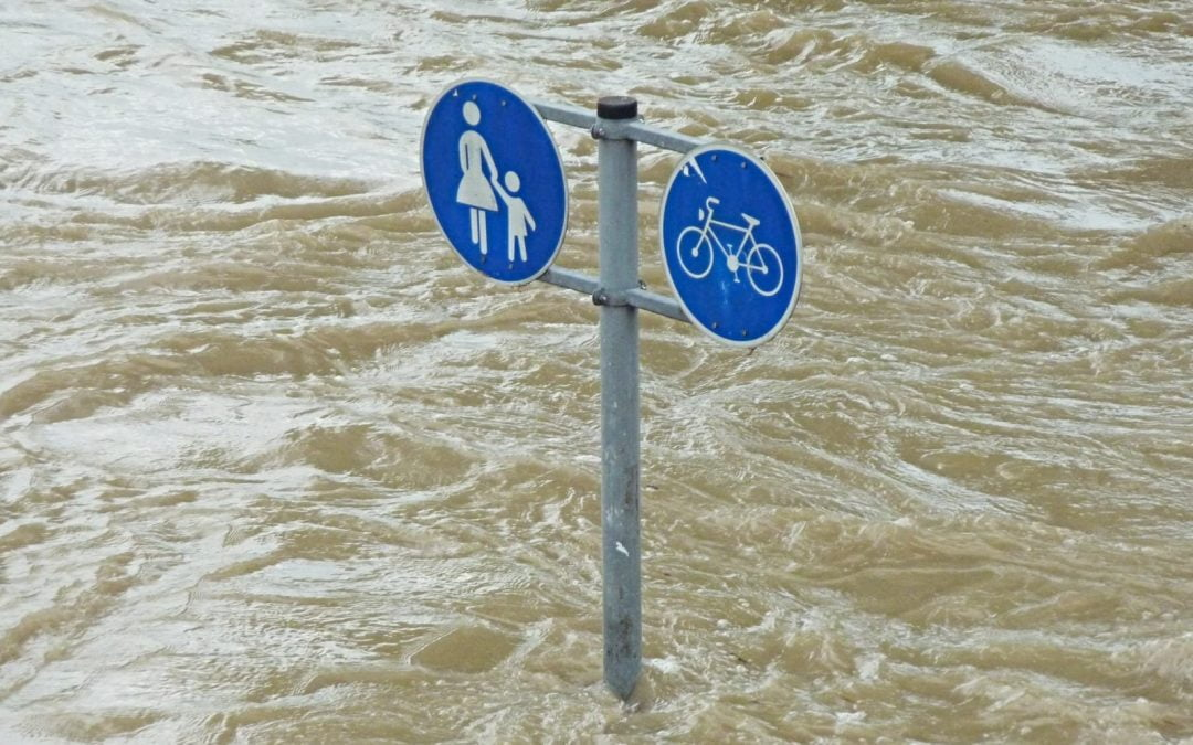 A pedestrian and bike crossing sign mostly covered with water