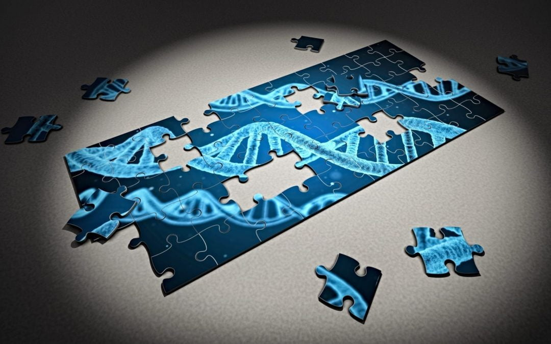 A puzzle with a strand of DNA