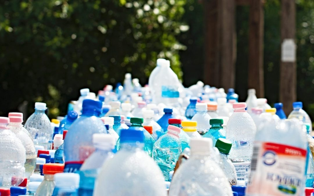 Dozens of plastic bottles lined up in several rows