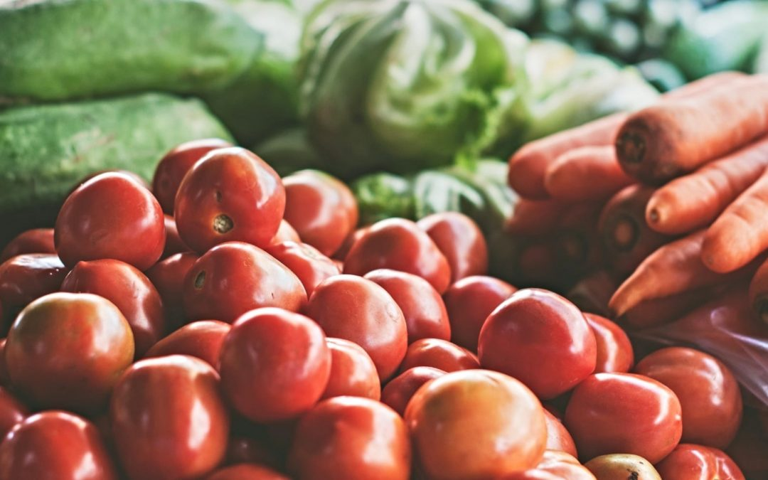 Panel: 'Climate-Friendly Diets' Crucial to Sustainable Future