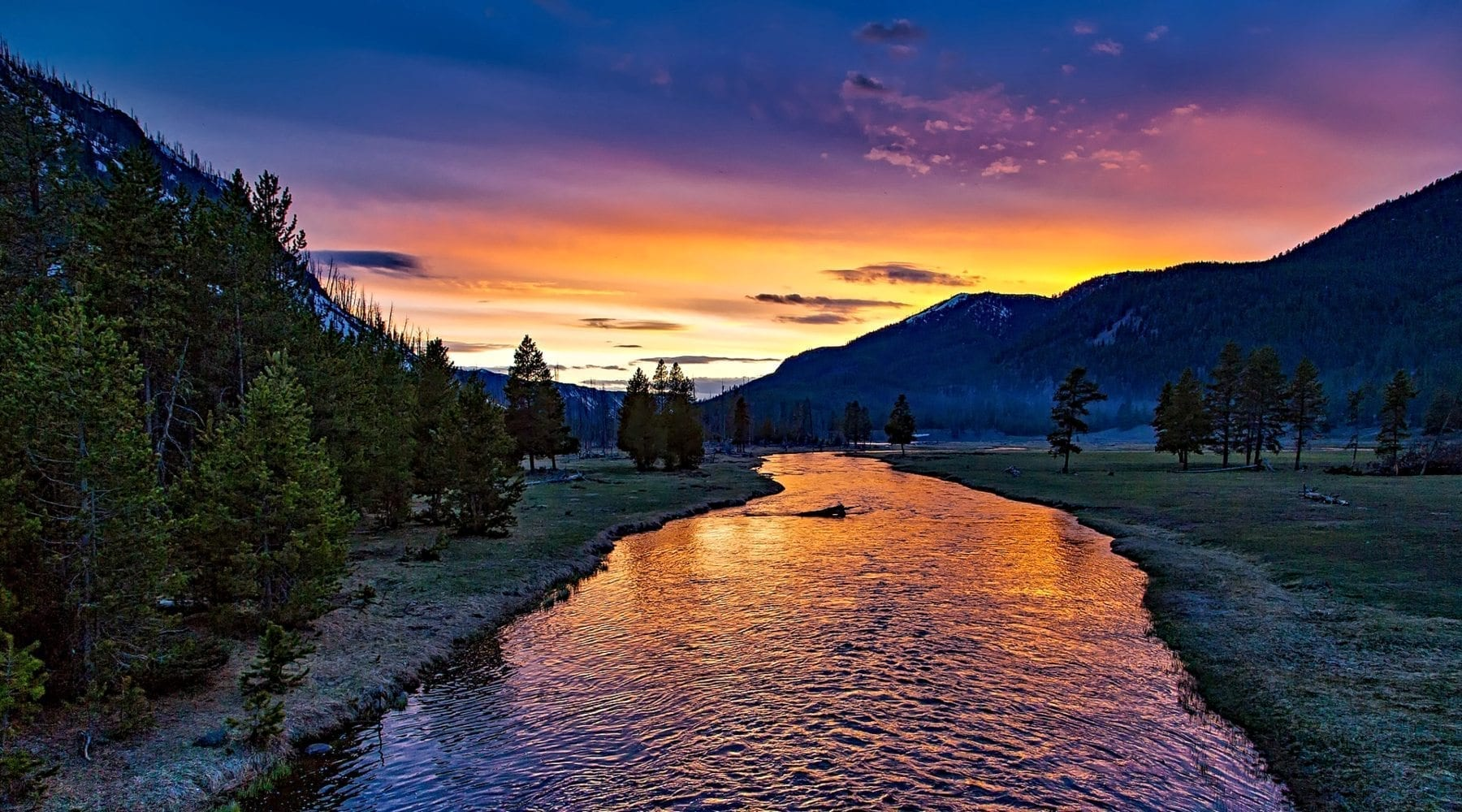 Yellowstone National Park at twilight