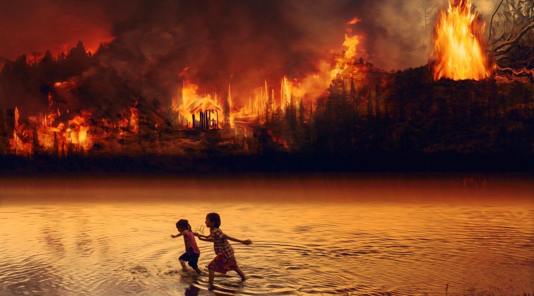Amazon Rainforest Isn't Burning; It's Being Burned
