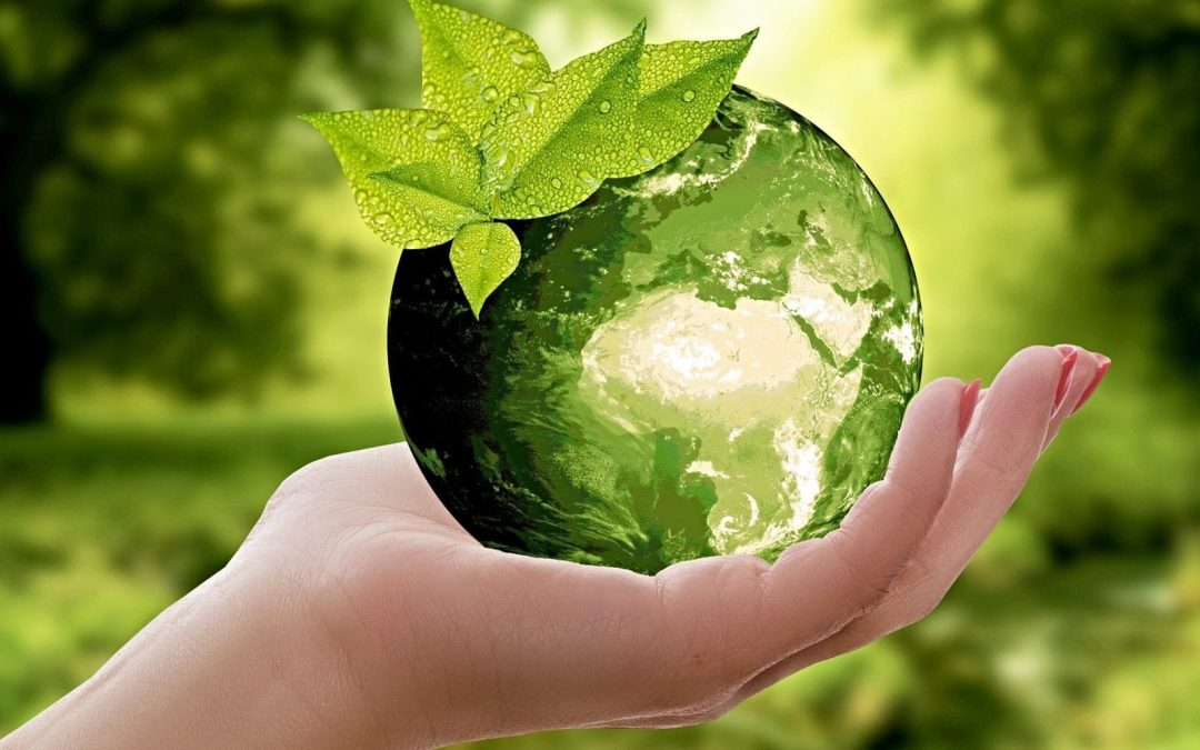 Advent Calls Us to Pursue 'Green' Peace for This Planet