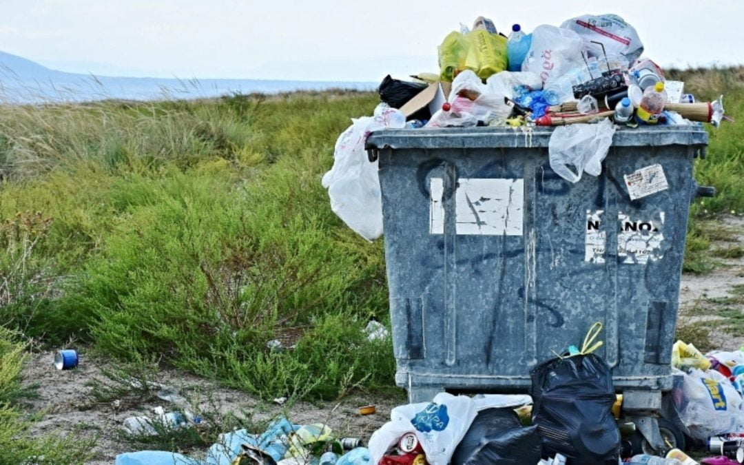 Report: Many 'Recyclables' Mislabeled, End Up in Landfill