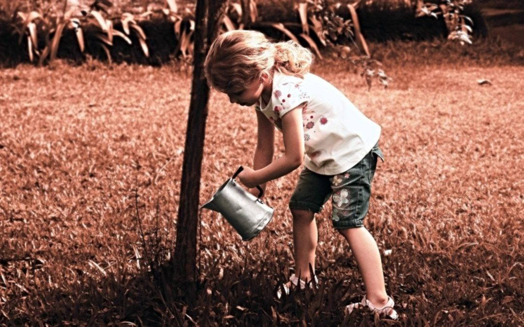Young girl watering a tree