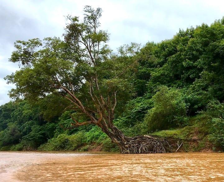 Laos Living