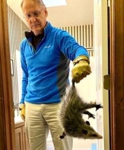 A man holding a possum