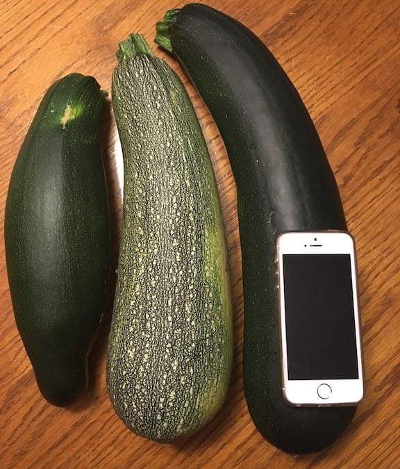Zucchini Gump