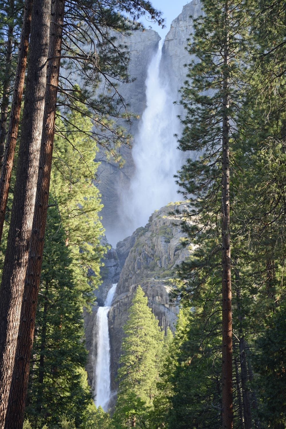 Yosemite & Sequoia National Parks Good Faith Experience: June 5-12, 2021