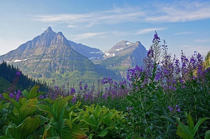 Glacier National Park Good Faith Media Experience: Choose One of Two Weeks -- August 14-21 or September 4-11, 2021