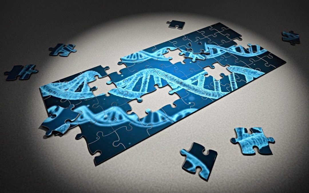 Jigsaw puzzle of DNA helix