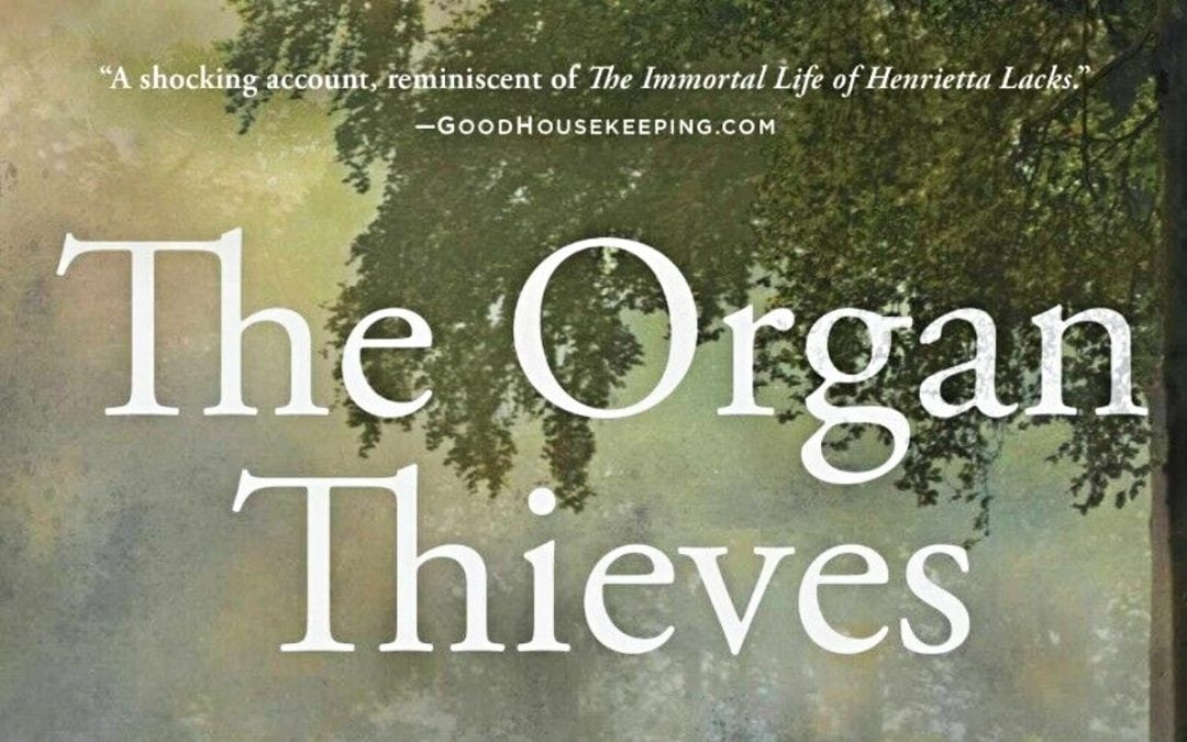 'The Organ Thieves'