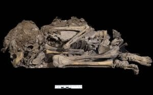 A skeleton found in a cave by the Israeli Antiquities Authority