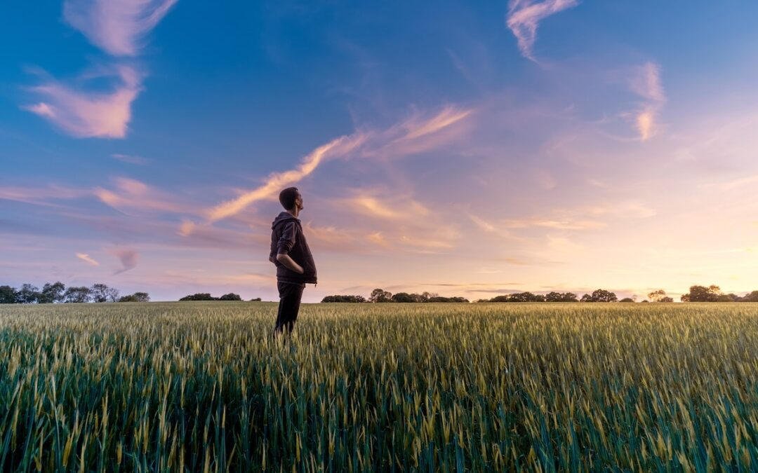 A man standing in a wheat field looking up at the sky.