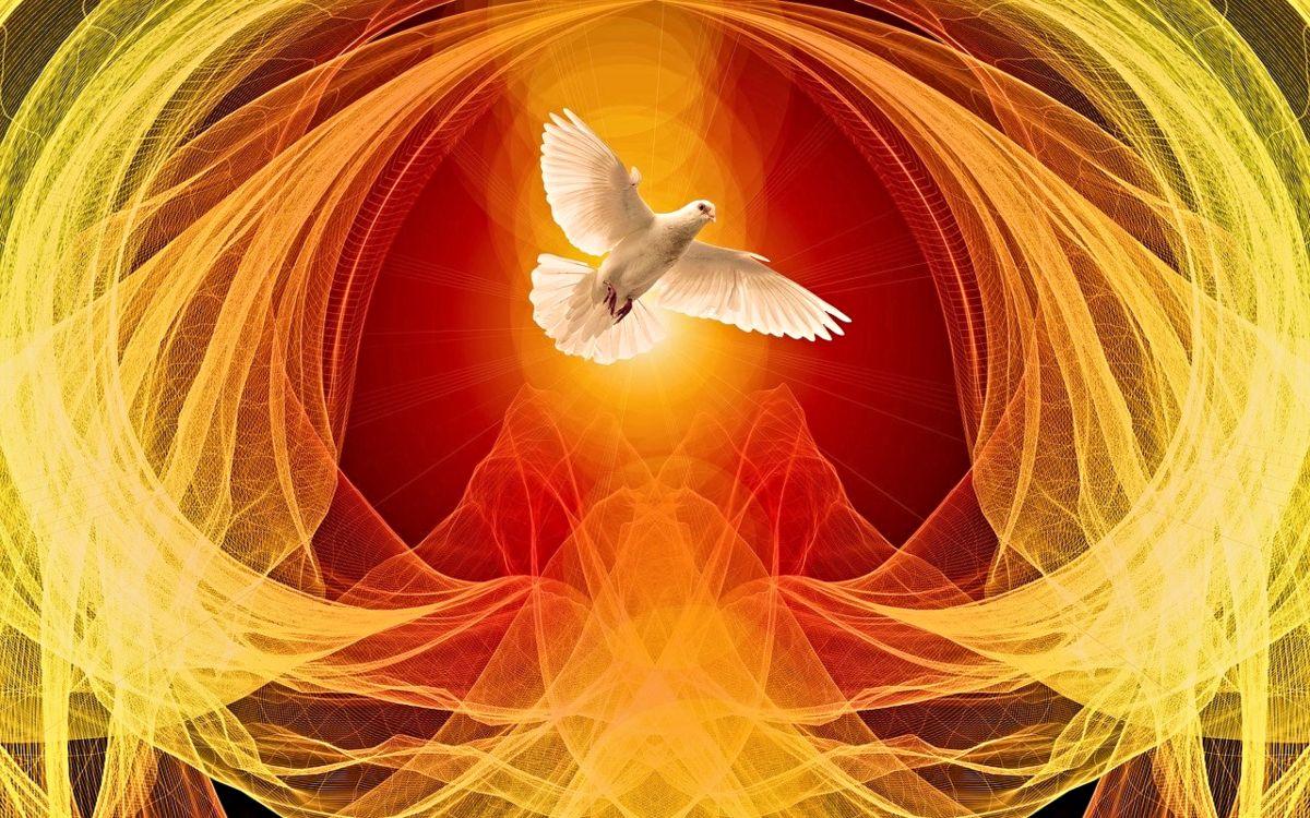 Entering Pentecost, Exiting COVID-19 Hibernation