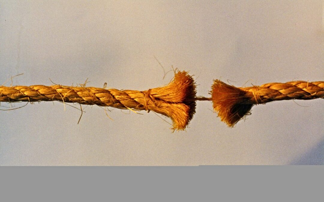 Thread held together by a strand
