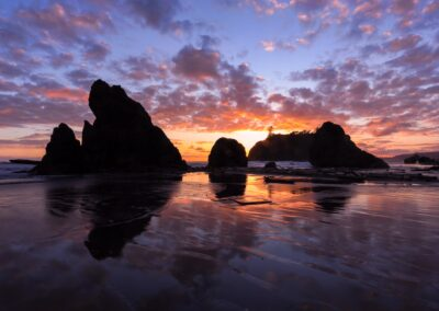 Seashore at sunset in Olympic National Park